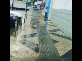 дождичек