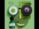 THE BODY SHOP — масло из серии «Чайное дерево»