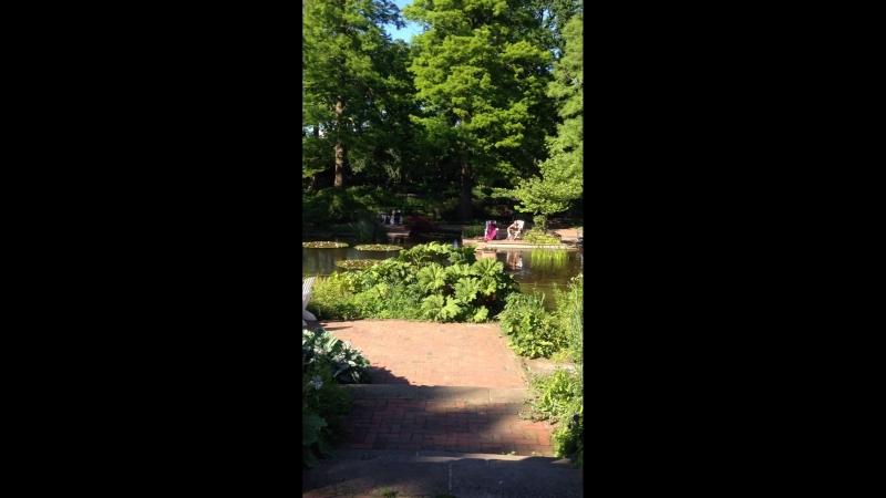 Park Planten un Blomen.