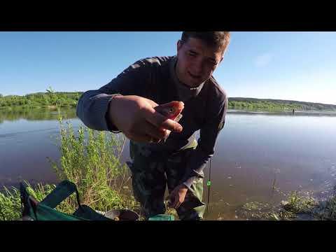 Рыбалка. Река Ока начинает радовать первой рыбой.