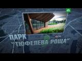 «Тюфелева роща»: стильный парк на месте промзоны