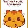 """Частный приют """"Рыжий Кот"""""""