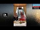 Тина Канделаки про Чеченскую Кухню, Жижиг-Галныш Рецепт. Очень Вкусно! Прямой эфир от 04.07.18