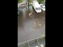 Дети плавают по улице после дождя