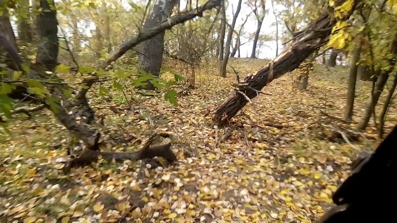 21.10.2018 Хортиця, нижній край острова, стежка до дальньої протоки у зворотньому напрямку