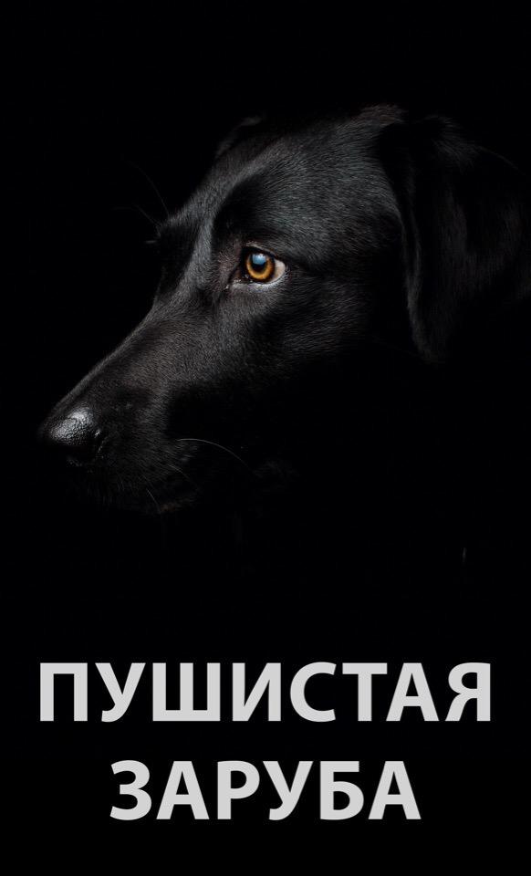 Афиша ПУШИСТЫЙ МАРАФОН