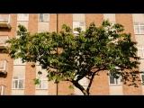 Hooverphonic_-_Romantic.mp4