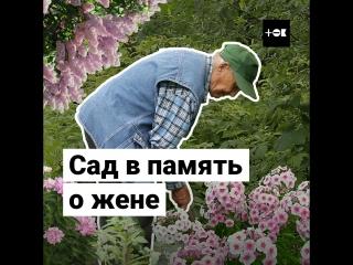 Сад в память о жене