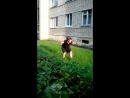 Roundut Backflip