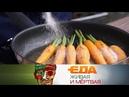 Еда живая и мёртвая что приготовить из моркови и вся правда о чесноке 08 09 2018