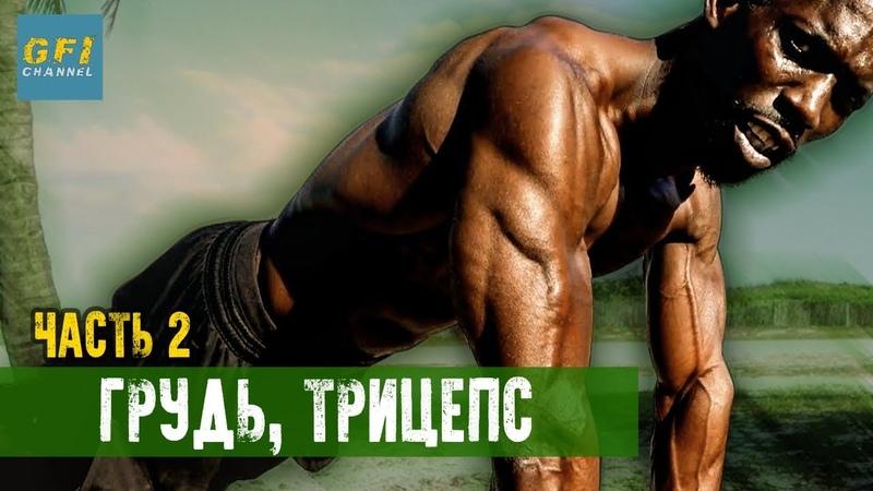 Тренировка Ганнибала Фор Кинга. Часть 2 Качаем грудь, трицепс (ТОЛЬКО НАТУРАЛЬНО!)