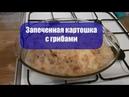 Приготовить вкуснейшую запеченную картошку с грибами