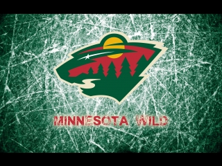 История Minnesota Wild 2000-2004