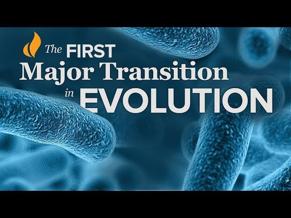 The First Major Transition in Evolution   Single-Celled Life—Prokaryotes to Eukaryotes