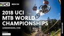 2018 UCI Mountain Bike World Championships - Lenzerheide (CHE) / Men's DH
