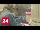 Биологическое оружие США в Грузии Россию окружают рассадниками инфекций - Россия 24