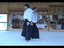 Hitohiro Saito, Tanto, Ken Jo,