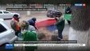 Новости на Россия 24 • Дворников, подметавших листья флагом, наказывать не станут