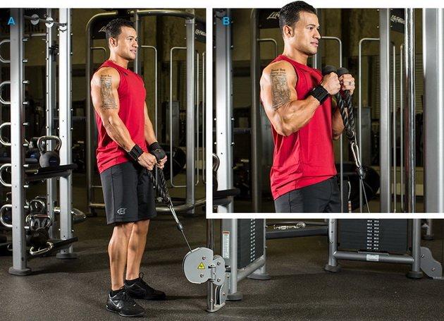 MSGw7JaDT5k 14 лучших упражнений для бицепсов для мужчин