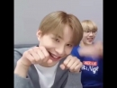 Since we're all missing jungwoo, here's him doing aegyo on loop~
