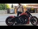Harley-Davidson by Roman Poll