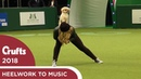 Freestyle Heelwork to Music Competition - Part 2 | Crufts 2018