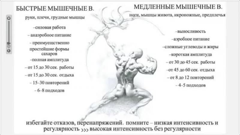 Вегетарианство сыроедение и спорт от Арсена Джагаспаняна