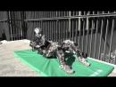 Kengoro чудо-робот похожий на человека