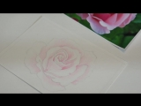 Рисуем розу цветными карандашами_HD