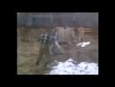 Проект 1 (online-video-