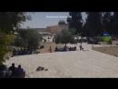 En direct de la Mosquée Sainte d'Al Aqsa Moubarak premiers Appel et prière du premier Vendredi de Ramadan