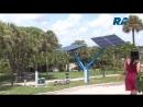 Во всей Флориде распустятся деревья электростанции
