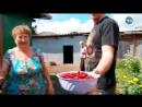 Самая красивая деревня. Утро с вами 21.08.2018 - Бархатово