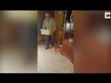 Радість собакена від появи нового друга