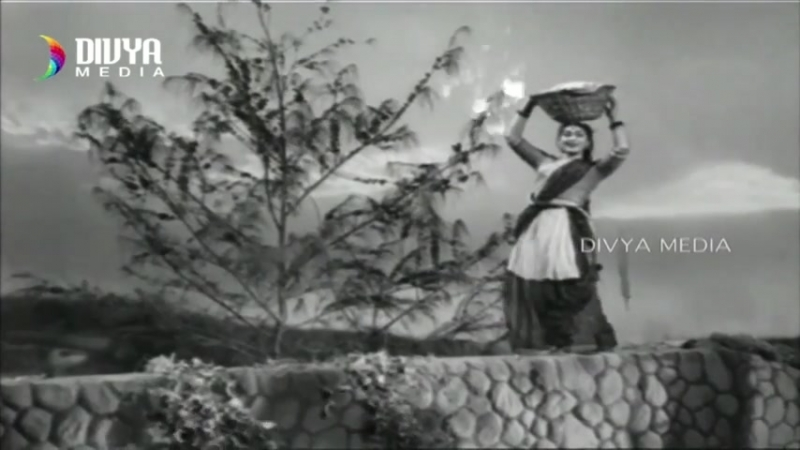 Kalasi Unte Kaladu Sukham 1961 Telugu Movie Video Songs Jukebox NTR Savitri SVR Divya Media