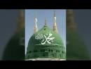 Мы любим Пророка Мухьаммада солляЛлаhy 'алейhи уа саллям 🌹❤