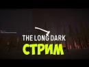 Стрим The Long Dark. Как согреться блондинке в лесу? EP#6.