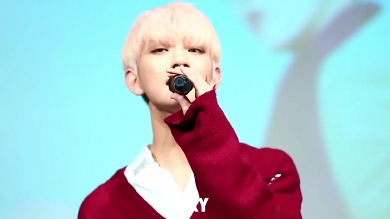 SEVENTEEN-바람개비( Joshua focus)