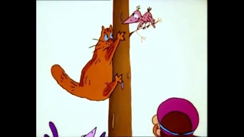 Кот и компания | Прикольные мультики - Самый смешной мульт для взрослых