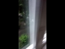 Погода в Пятигорске под названием О ДА ДЕТКА НАМ ЖОПА!