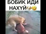 VID_20180807_WA0077-wap_sasisa_ru.mp4