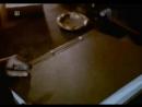 Jajo 1984 Рус семпл субт kosmoaelita
