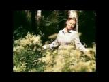 Людмила Сенчина - Полевые цветы (1983, клип)