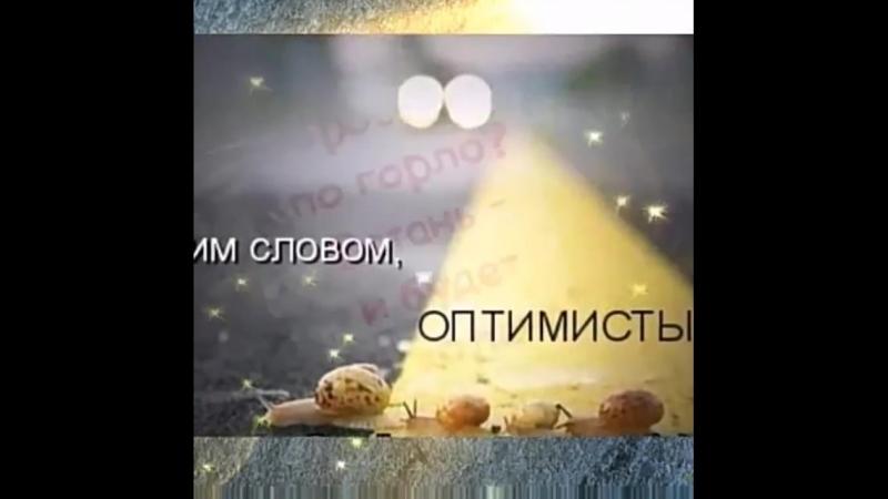 VID_50630610_205516_510.mp4