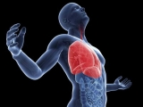 BBC: Тело человека (4) Период полового созревания / The Human Body (Кристофер Спенсер / Christopher Spencer)