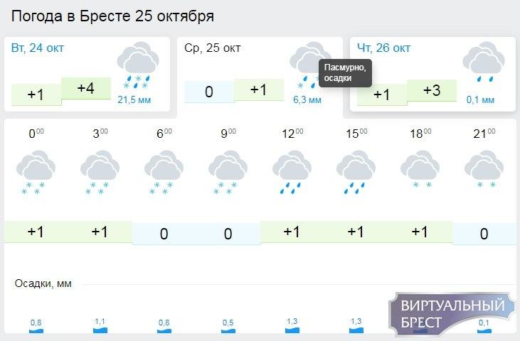 Погода резко поменяется: холод, дождь и снег в Бресте на неделе