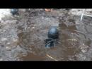 Водолаз в болоте)