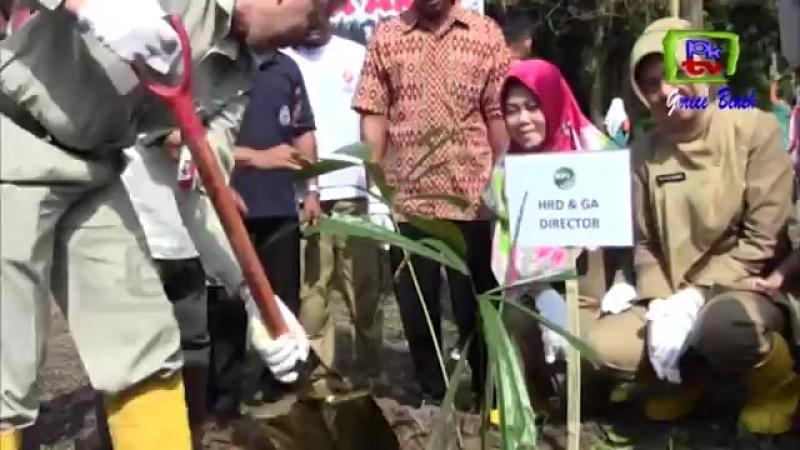 CSR PT KALTIM PARNA INDUSTRI (KPI) PENANAMAN HUTAN