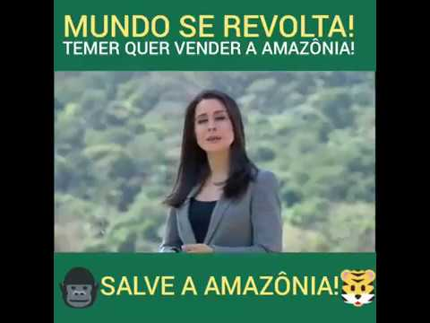 Salve a Floresta Amazônica. AcheiC