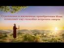 Слова Христа Последних дней «Сам Бог уникален. Часть III Власть Бога (II) Глава 6»